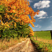 Country Road And Autumn Landscape Poster