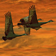 Cranes At Sunrise Poster by Larry Linton