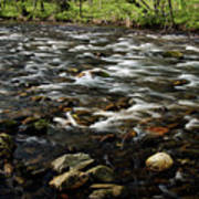 Creek, Smoky Mountains, Tennessee Poster