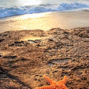 Crescent Bay Laguna Beach California Poster by Utah Images