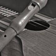 Cuatro Guitar And Flute Poster