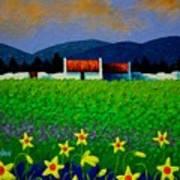 Daffodil Meadow Poster