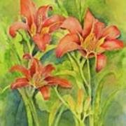 Day Lilies Poster
