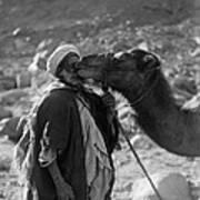 Egypt: Traveler Poster