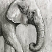 Elephant Watercolor Poster
