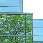 Environment Reflected Poster