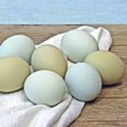 Exotic Colored Chicken Eggs Poster