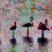 Flamingos Family Poster