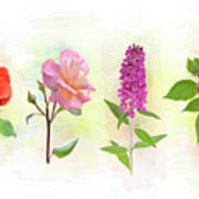 Flower Background Poster