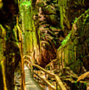 Flume Gorge Poster