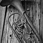 Forgotten Tuba Poster