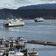 Friday Harbor Poster
