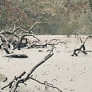 Frozen Fallen Poster