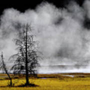 Geysers And Steam Rising In Yellowstone National Park Poster