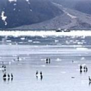 Glacier Bay Alaska Poster