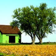 Green Barn  Poster