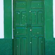 Green Wood Door Poster