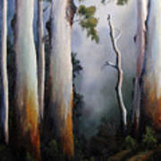 Gumtrees After The Rain Poster