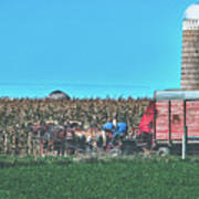 Harvest In Amish Country - Elkhart County, Indiana Poster