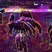 Horses Flock Coupling Ride Animals  Poster