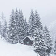 Huts And Winter Landscapes Poster