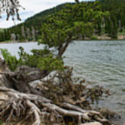 Idaho Lake Poster