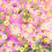 Impressionist Floral Xvi Poster