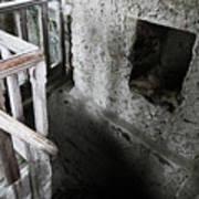 Inside The Castle Frankenstein Poster