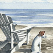 Jack Russel Terrier At The Beach Poster