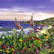 Laguna Niguel Garden Poster
