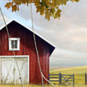 Large Red Barn With Bicycle In Field Of Wheat Poster