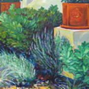 lavender Delight Poster