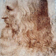 Leonardo Da Vinci Poster
