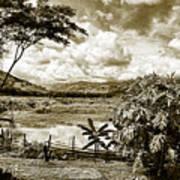 Llanos Venezolanos Poster