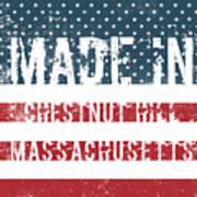 Made In Chestnut Hill, Massachusetts Poster