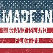 Made In Grand Island, Florida Poster