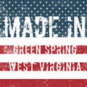 Made In Green Spring, West Virginia Poster