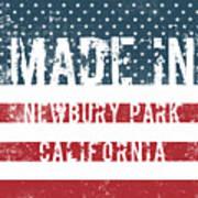 Made In Newbury Park, California Poster