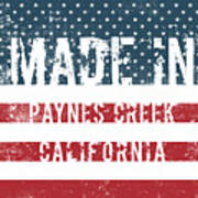 Made In Paynes Creek, California Poster