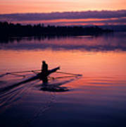 Man Rowing On Montlake Cut Poster