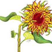 Mari's Sunflower Poster