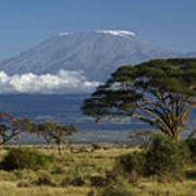 Mount Kilimanjaro Poster