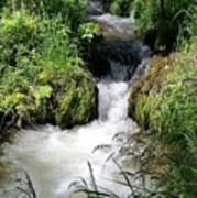 Mountain Stream Poster