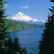 Mt. Hood National Forest Poster