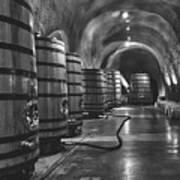 Napa Valley Wine Cellar Poster