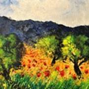 Olive Trees And Poppies  Poster