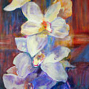 Orchids Behind Glass Poster
