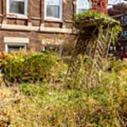 Overgrown Fall Garden Poster