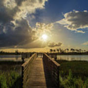 Pine Glades Sunset Poster