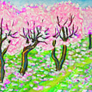 Pink Cherry Garden In Blossom Poster